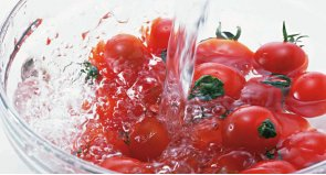 FOOD HYGIENE & HACCP malta, Assure Food & Water Safety Consultants malta